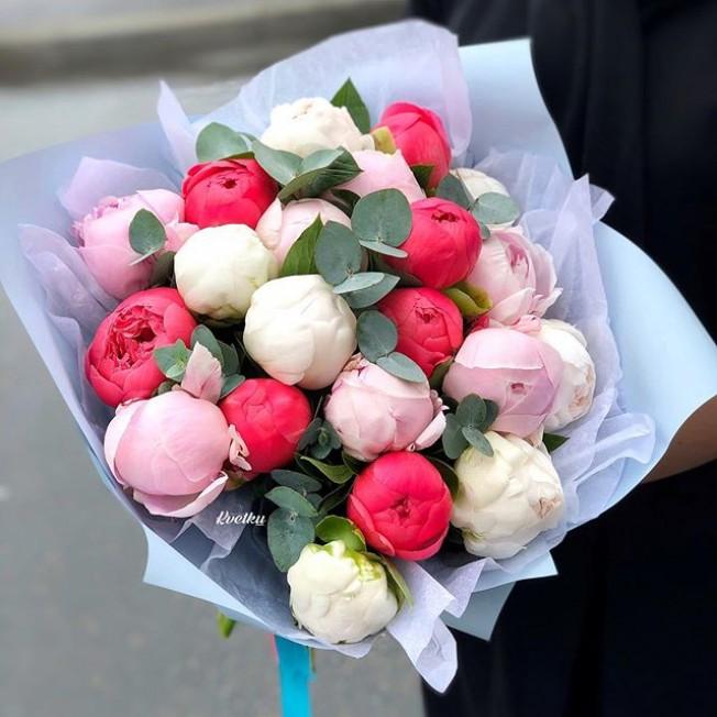 Bouquet of peonies №14