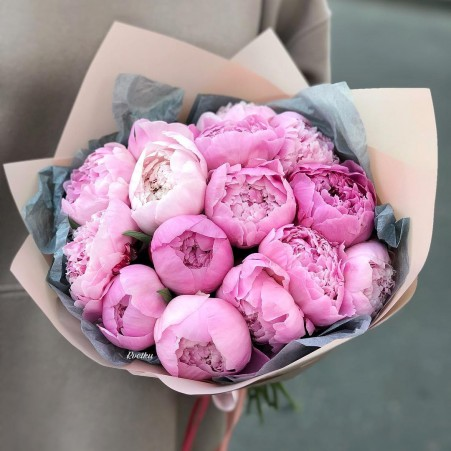 Peonies - buy in Minsk