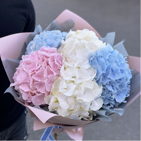 Bouquet of flowers №78 from different colors of hydrangeas (from 3pcs)