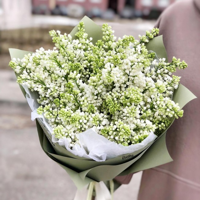 Bouquet of white lilac