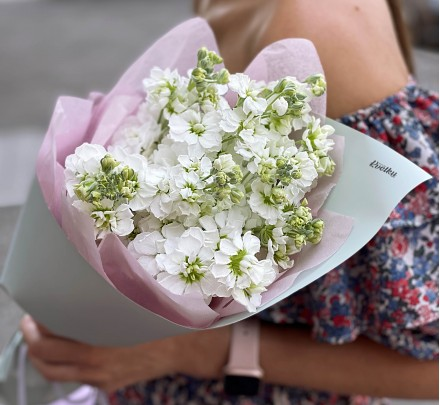 Bouquet of flowers from white matthiola