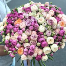 Bouquet of flowers №73 from pioneer roses Misty Bubbles, Bombastic, Blossom Bubbles, Vuvuzela