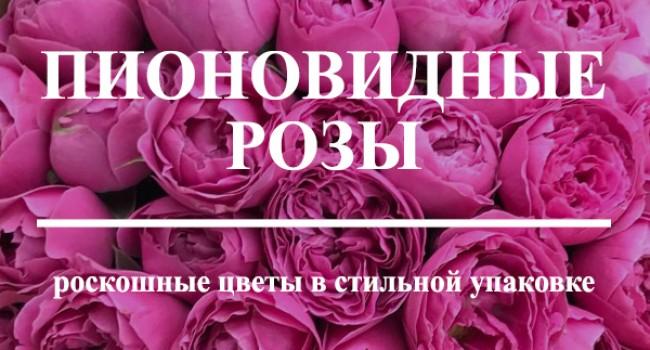 пионовидные розы купить в Минске